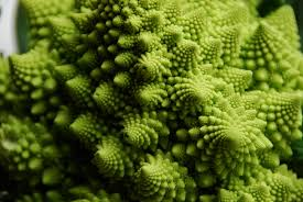 Image result for fractals broccoli